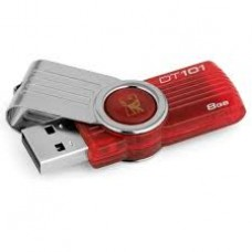 Pendrive Kingston Datatraveler 101 8Gb